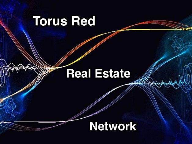 Large torus real estate network
